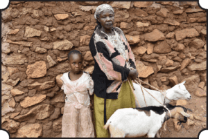 Goats for 2 families