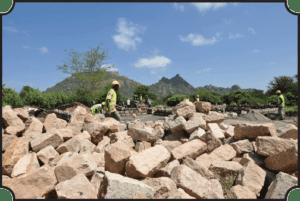 Stones for building dorms