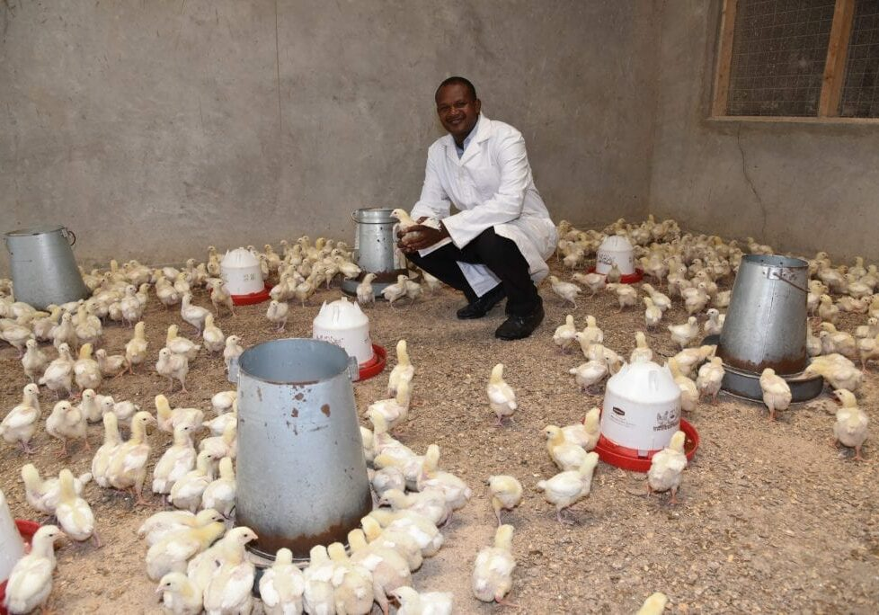 poultry farm in kenya provided by MCF
